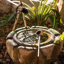 Accessoires du bassin