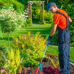 Entretenir le jardin
