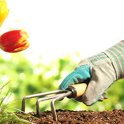 Outillage d'entretien du jardin