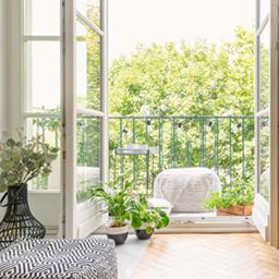 Plantes pour le jardin, balcon et terrasse