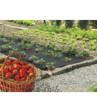 Fresafilm film de paillage fraises 40 microns 1,40x20m - INTERMAS