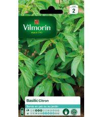 Basilic citron série 2 - VILMORIN