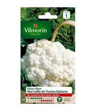 Graines Chou Fleur Merveille des 4 Saisons - VILMORIN