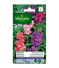 Graines Balsamine Camélia Double Variée - VILMORIN
