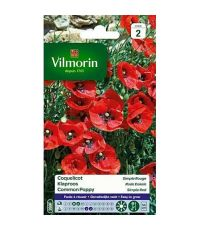 Graines Coquelicot Simple Rouge - VILMORIN