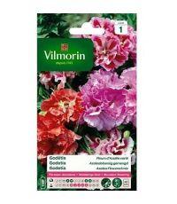 Graines Godétia Fleurs d'Azalée Varié - VILMORIN