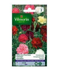 Graines Œillet des Fleuristes Triomphe Varié - VILMORIN