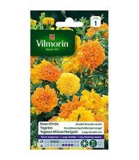 Graines Rose d'Inde Double Grande Variée - VILMORIN