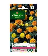 Graines Rose d'Inde Naine Variée - VILMORIN