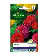 Graines Zinnia Fleur Monstrueuse - VILMORIN