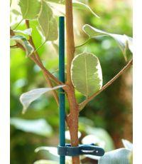 Tuteur bambou refendu teinté vert 0,40m - CELLOPLAST