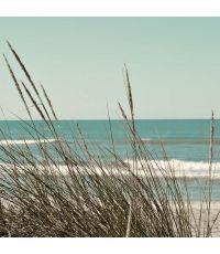 Toile Herbes sur la plage 30x30cm