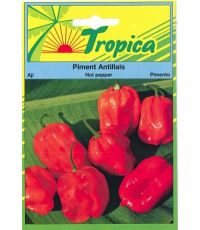 Piment Antillais - TROPICA