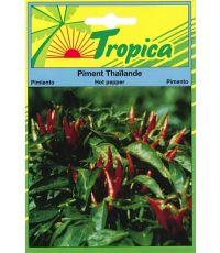 Piment Thailande - TROPICA