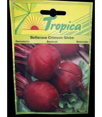 Betterave Crimson globe - TROPICA