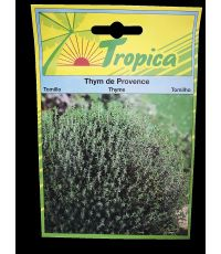 Thym de Provence - TROPICA