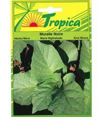 Morelle noire - TROPICA
