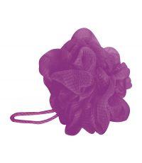 Fleur de douche violet