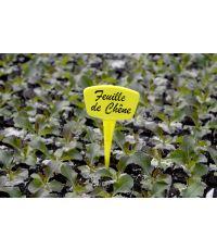 Étiquettes Label 15cm jaunes à planter x 10 - NORTENE