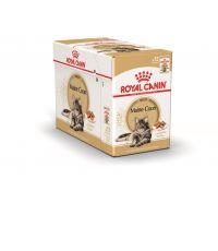 Pâtées Chat Maine Coon Adult 12x85gr - ROYAL CANIN