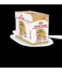 Pâtées Chien Poodle Adult 12x85gr - ROYAL CANIN