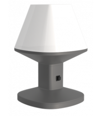 LAMPE A POSER SOLAIRE 80LM