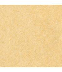 papier peint crépi beige - 1ER