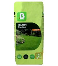 Gazon rustique 10 kg - B GREEN