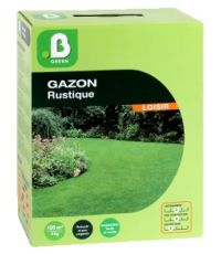 Gazon rustique boîte 3 kg - B GREEN